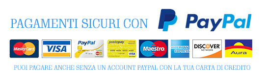 immagine-paypal-2